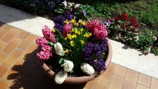 CES Easter Flowers 2